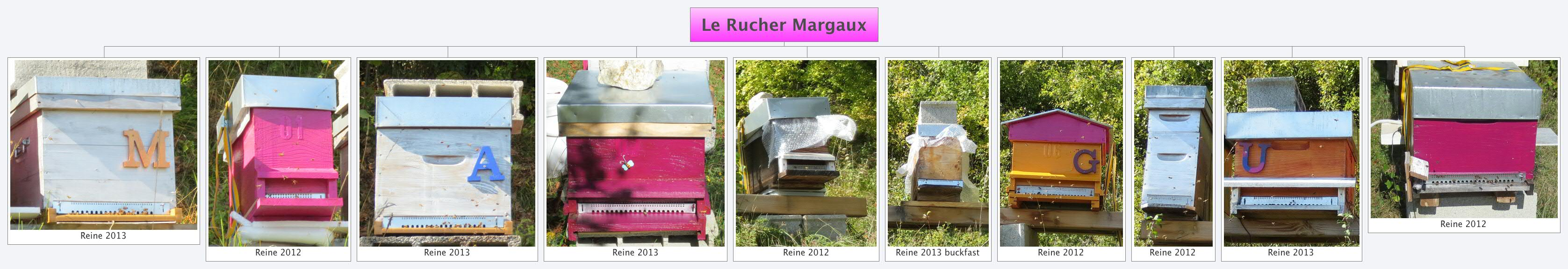 Le Rucher Margaux1